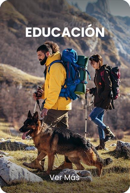 educacion-responsive