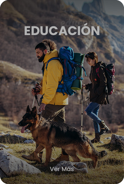 servicios-interna-educacion-hv