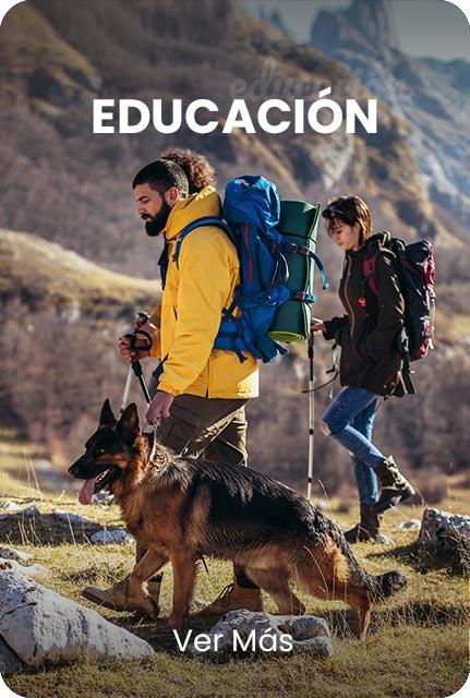 servicios-interna-educacion
